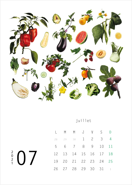 Calendrier 2021 Lulu Editions Juillet